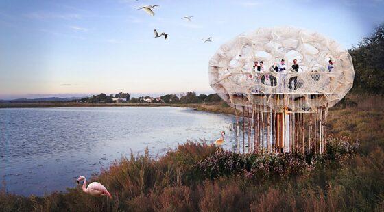 Eco-nests