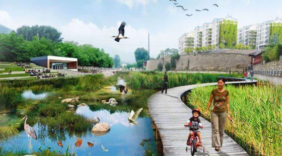 Ecological Masterplan