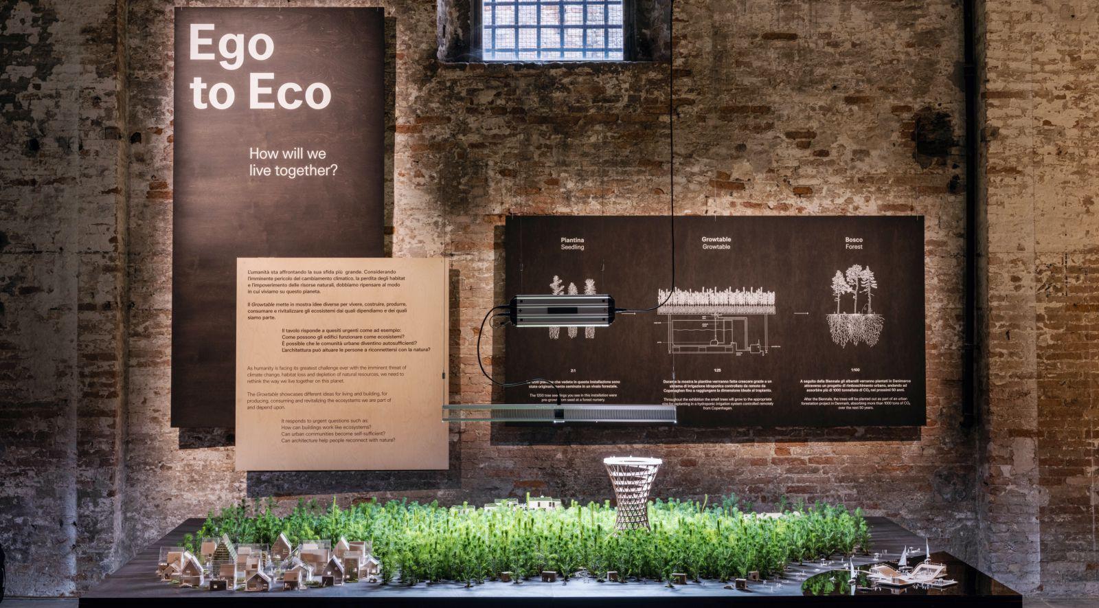 Ego to Eco