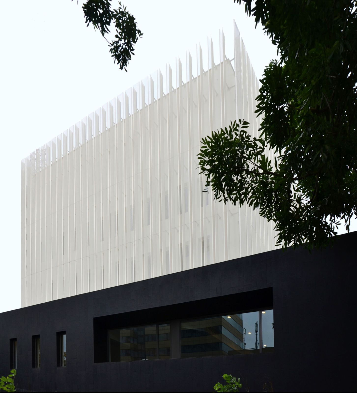 Embassy of France and French Institute