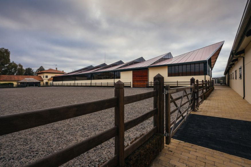 Horse Ridding Field