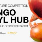 Mango Vinyl Hub design competition by Bee Breeders