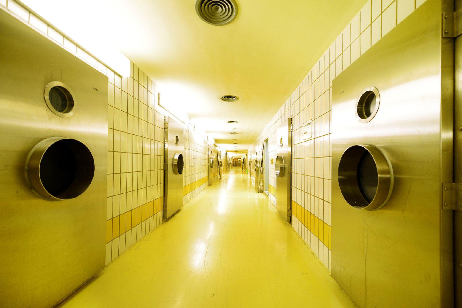 Mäusebunker & Hygieneinstitut