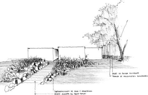 Next Hydroponic Plant
