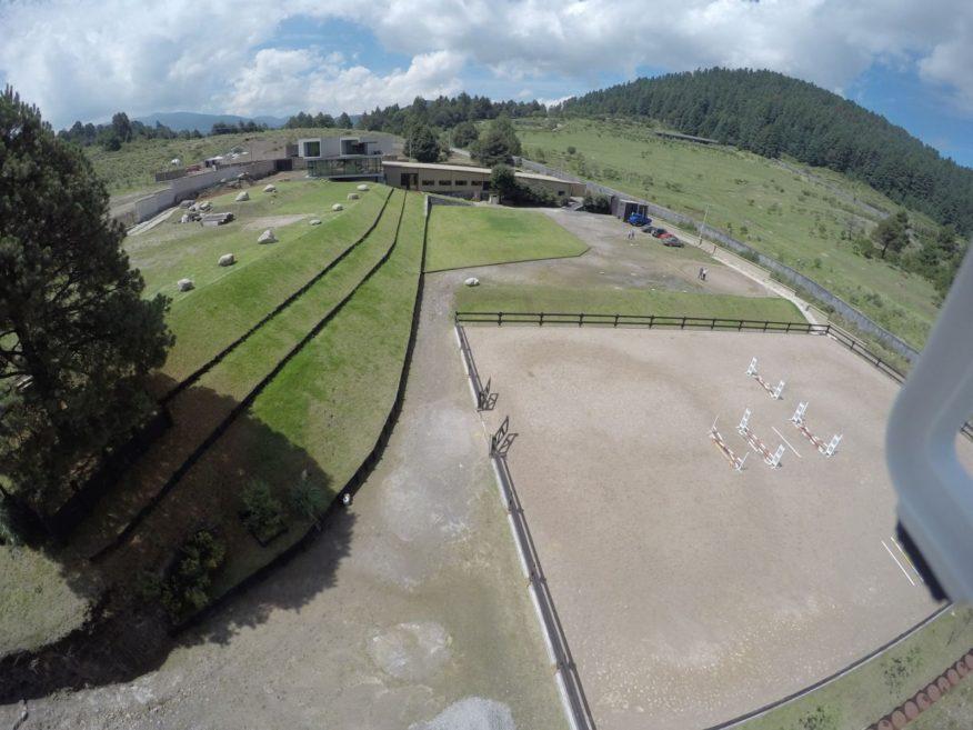 Rancho del Arbol