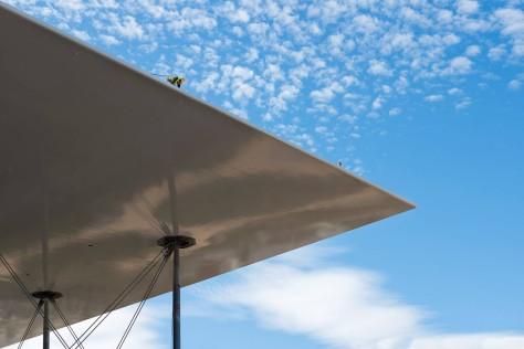 SNFCC Energy Canopy