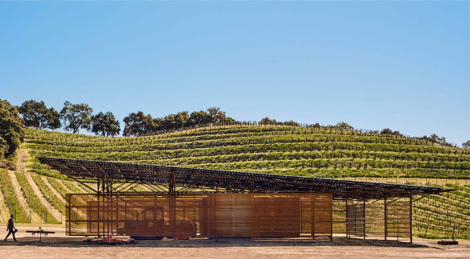 Saxum Vineyard