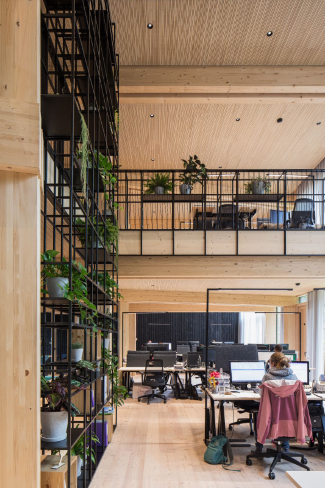 Lush Open Office