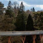 Treetop Walkway at Westonbirt Arboretum by Glenn Howells Architects