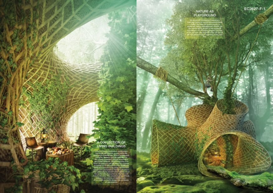 Innovation Inspired by Nature